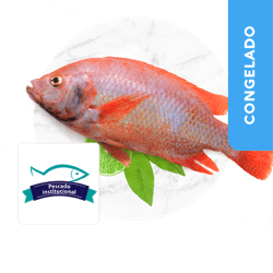 Mojarra Roja Pescado Inst