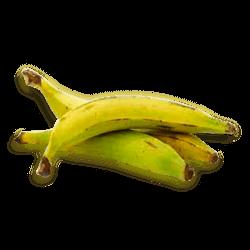 Plátano Pintón
