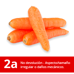 Zanahoria 2a