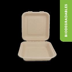 Contenedor biodegradable 8x8 sin division - Reyma