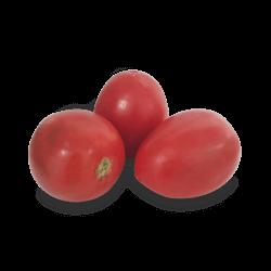 Jitomate Saladette Rojo
