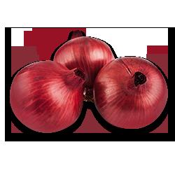 Cebolla Cabezona
